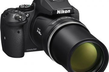 Nikon P900 vs. P1000: Which is Better