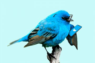 Is it Safe to Use Twitter? Social Media Says Its Not Inside Job