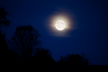 Chance To Relieve Stress During The Blue Moon Of Halloween