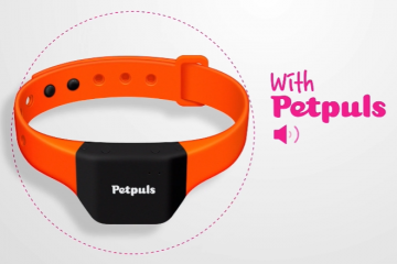 South Korea: Smart Dog Collar Shows Owner What Their Dogs are Feeling