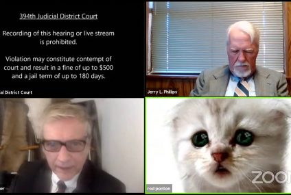 Lawyer Can't Remove Zoom Filter, Shouts 'I'm NOT a cat' in Viral Video