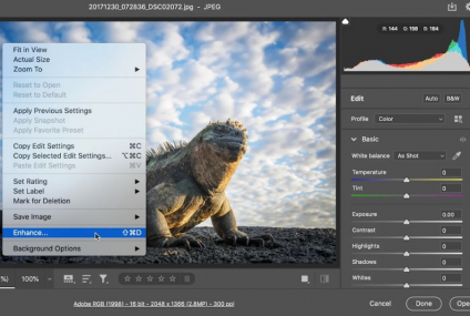 Adobe Photoshop's Super Resolution Fixes Missing Details! Advanced Guide