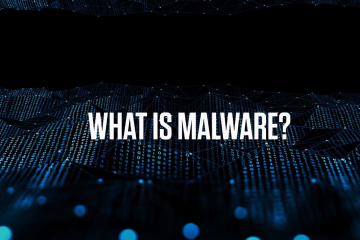 Malware 101: what is it and how does it work