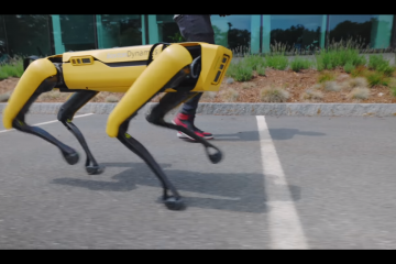Robotic Dogs: Companions for the Blind