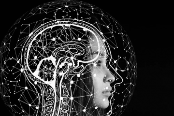 Artificial 'Brain' Model Drawing a Path For More Human-like AI