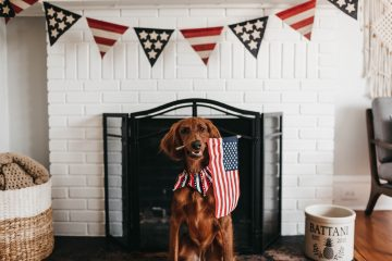 Early 'Fourth of July' deals under $100
