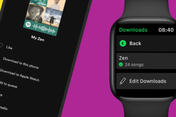 Listen to Spotify on Your Apple Watch: How to Download Them