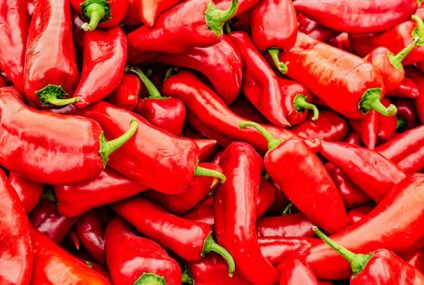NASA Astronauts Grow Chile Pepper On The ISS, And Will Taste Them